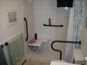Grab bars, low threshold shower, fold down seat
